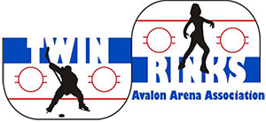 twin-rinks