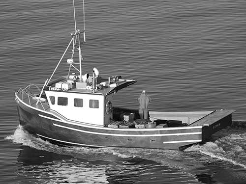 cat marine fishing boat