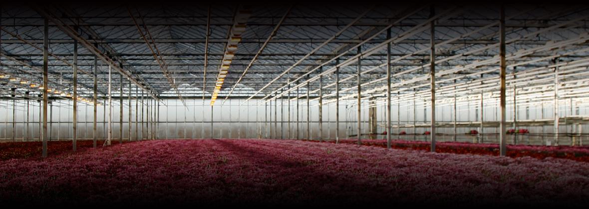 seeres et agriculture