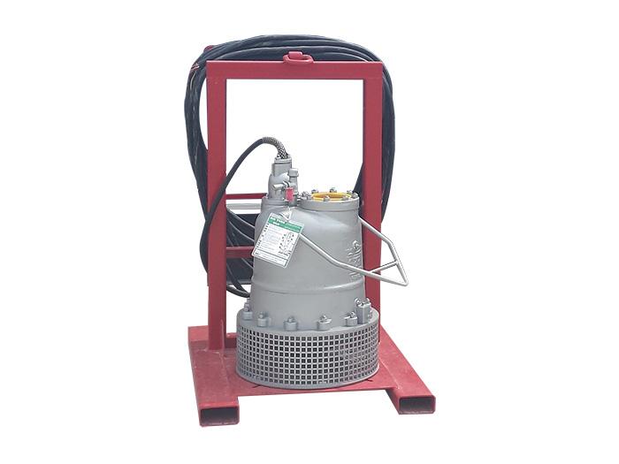 Submersible rental pump